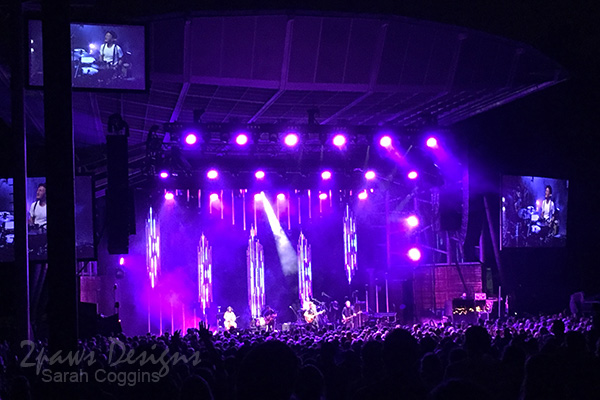 Project 52 Photo: Week 37 – Lumineers Concert
