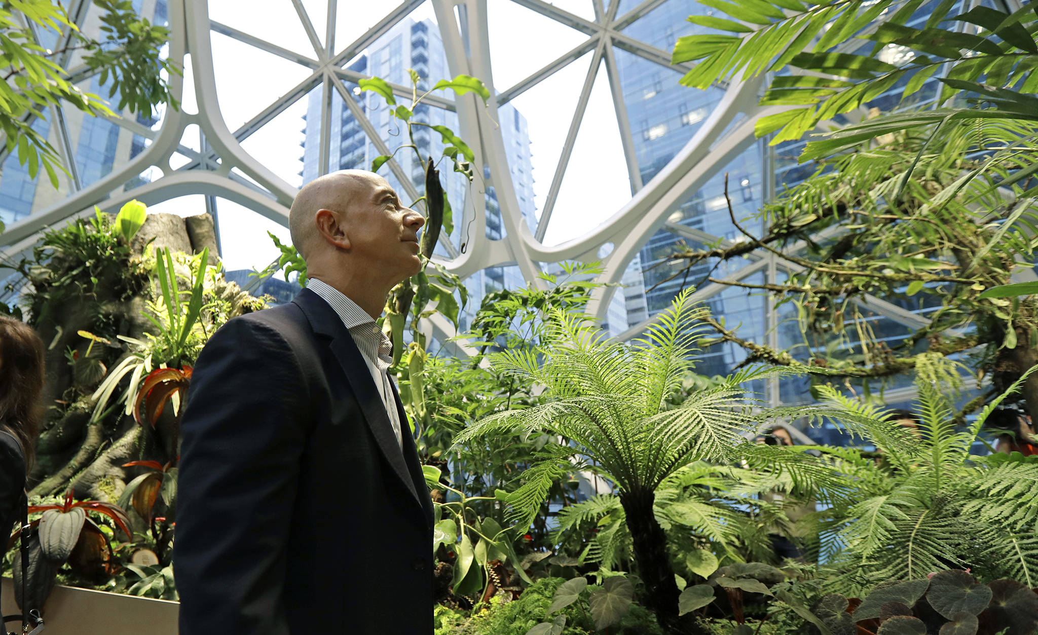 Amazon Uk Camano Island Photo Gallery Bezos Opens The Amazon Spheres In Seattle
