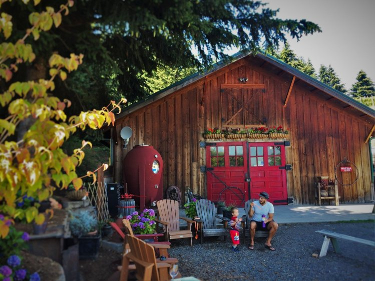 Rob Taylor and TinyMan Family Friendly wine tasting at AniChe Cellars Underwood Columbia River Gorge 2