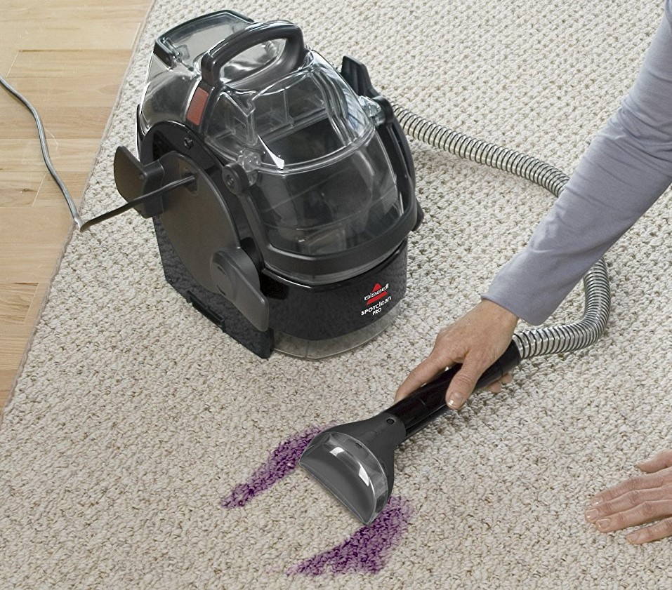 Carpet Cleaning Vacuum 10 Best Carpet Cleaners For Pets Of 2019 Pet Territory