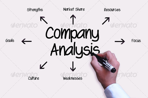 Company Analysis in Satellite, Ahmedabad ID 6247244812 - company analysis