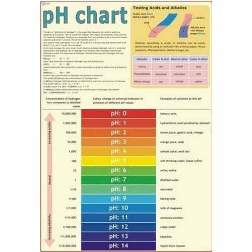 Ph Chart at Rs 150 /piece(s) Daryaganj New Delhi ID 7575125330 - ph chart