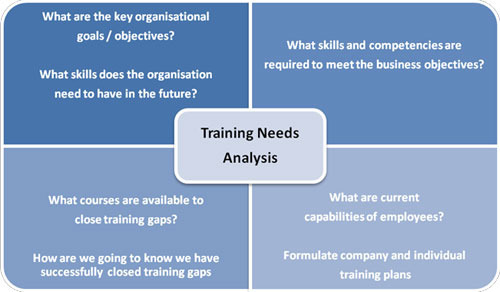 Training Need Analysis in Noida, Sector 4 by Mount Talent Consulting - needs analysis