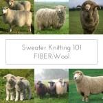Sweater Knitting 101 FIBER: Wool