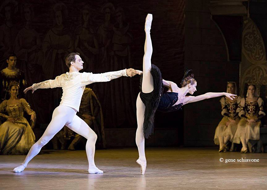 SWAN LAKE EKATERINA KONDAUROVA Ballet Pinterest Swan lake - tenant lease form