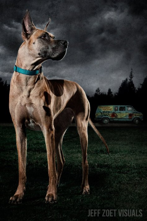 Scooby-doo le Dogue Allemand