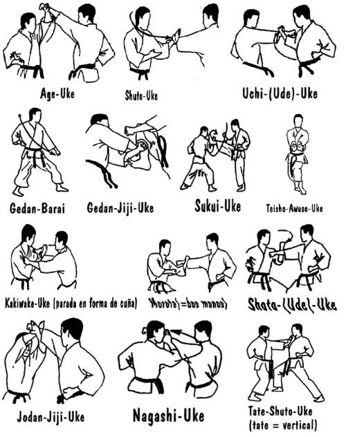 tumblr_mhcks4pwe41qa5h42o1_500jpg 500×632 pixels Karate - border templates word