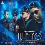 Calii Kush Ft. Kario & Yaret Y Cora El Calor – Tu Y Yo (Official Remix)  (Cambio De Mando)