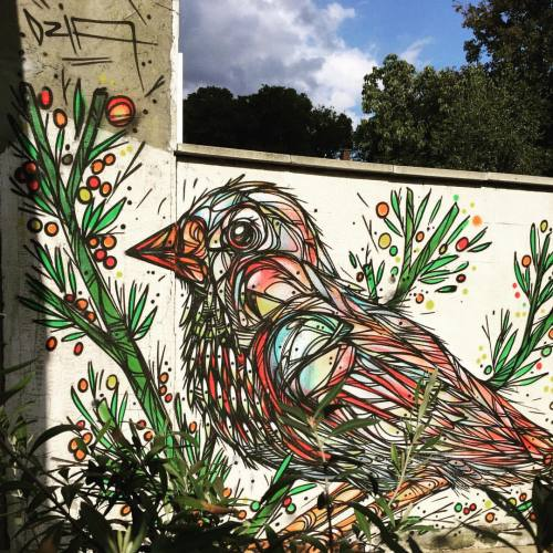 dzia:  Put a bird on it #dzia #streetArt #graffiti #bird #lineart #dziakrank #kessel-lo #putabirdonit (bij Kessel-Lo)