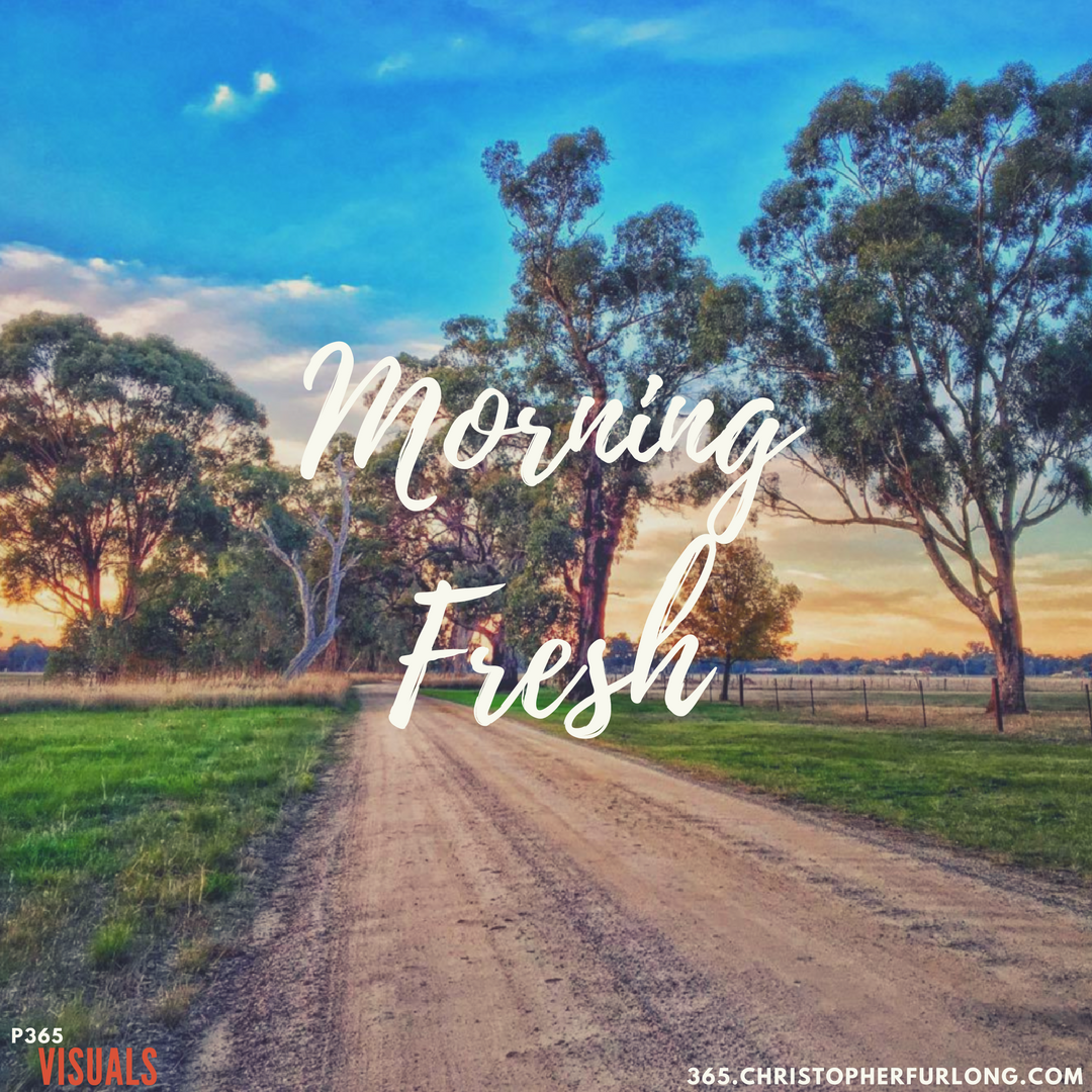 Day #148: Morning Fresh