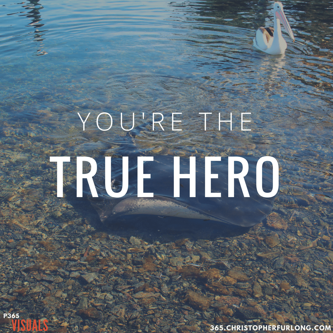 Day #203: You're The True Hero