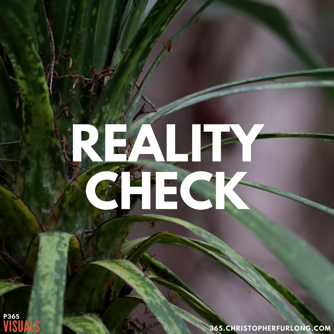 P365 2018: Day #008: Reality Check