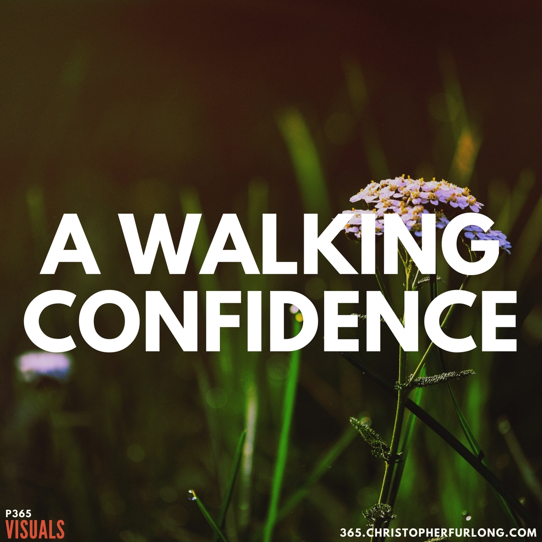 P365 2018: Day #101: A Walking Confidence