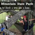 panola mountain state park tree climbing