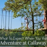 Thrills & Chills With Treetop Adventure at Callaway Gardens