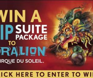 "281.  ""Dralion"" Cirque Du Soleil VIP Package Giveaway"