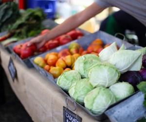 222. Get Growing: Barrington Farmer's Market Etiquette