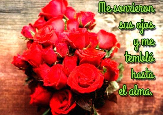 Imágenes de Rosas con Movimiento, Frases y Mensajes de Amor