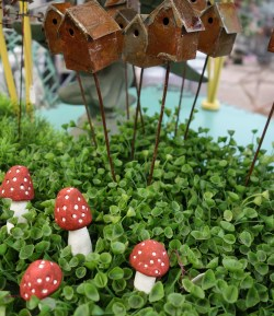 Small Of Fairy Garden Flowers