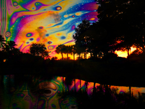 Lsd Trip Wallpaper Hd Trippy Hippie Lsd Acid Island Wrongbrained