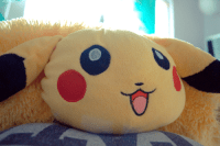 pikachu pillow pet on Tumblr