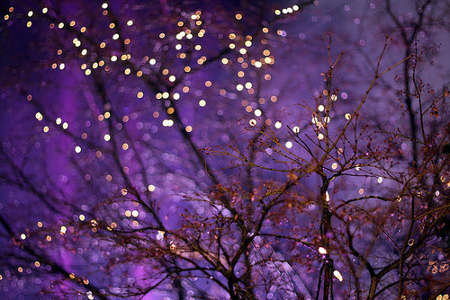 Windows Rotating Wallpaper Fall Fairy Lights Tumblr Background Www Imgkid Com The