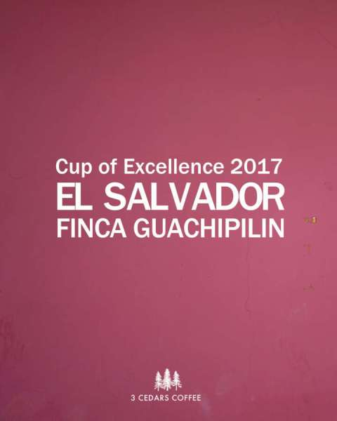 guachipilin