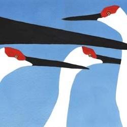 "Cranes in 3 Colors #1 14"" x 10"""
