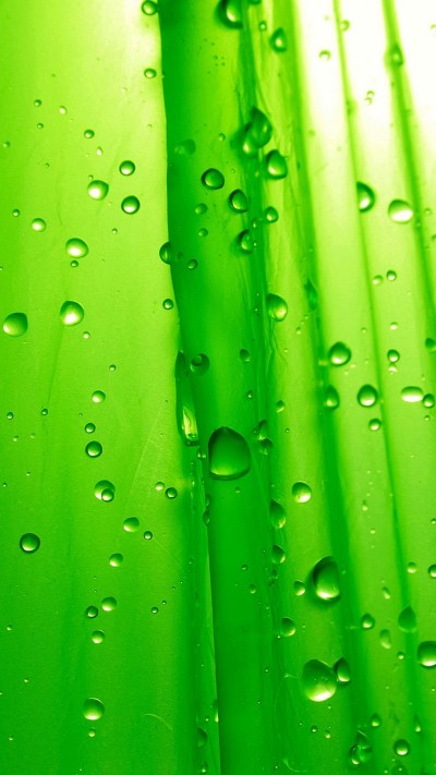 Neon Green HD Wallpapers For Android - 2019 Android Wallpapers