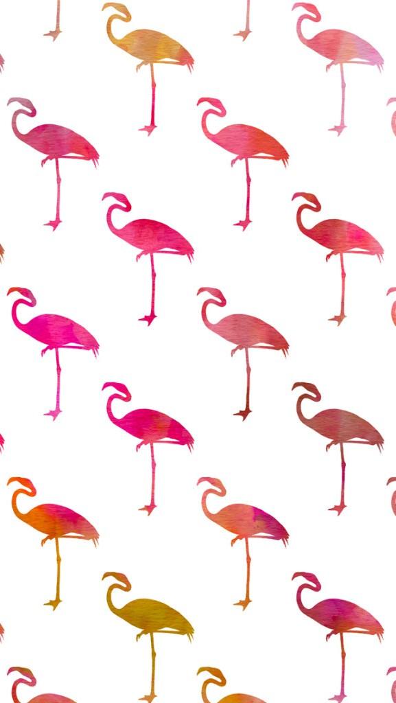 Lock Screen Wallpaper Iphone 7 Flamingos Cute Wallpaper For Iphone 2018 Iphone Wallpapers