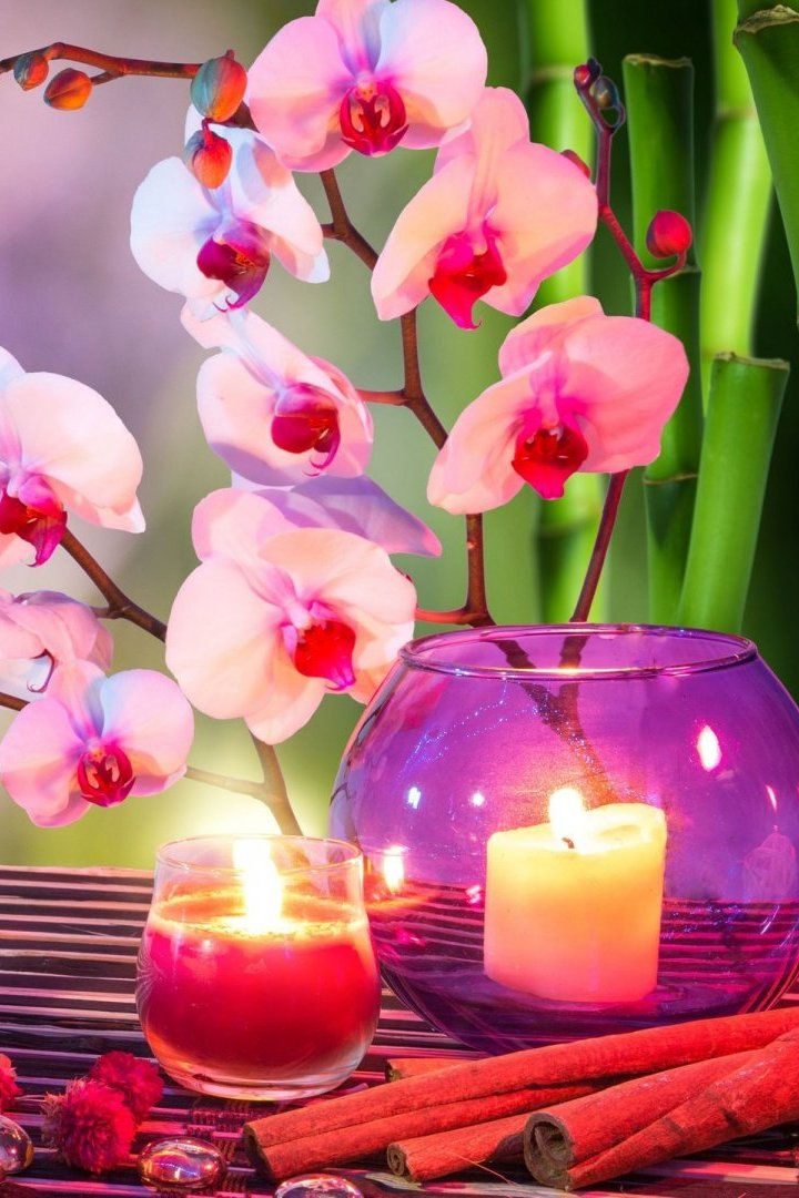 3d Orchid Wallpaper Orchids Candles Stones Wallpaper Iphone 2019 3d Iphone
