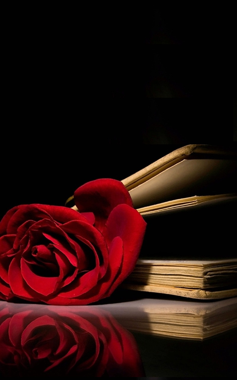Iphone Wallpaper Book Quotes Red Rose Book Wallpaper Iphone 3d Iphone Wallpaper
