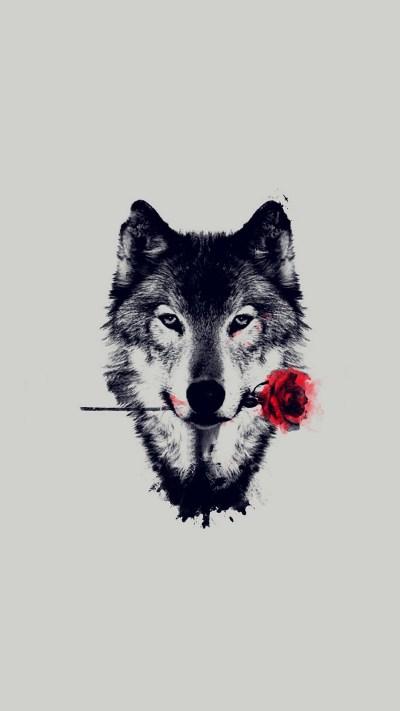 Wolf Red Rose Art Wallpaper iPhone   2019 3D iPhone Wallpaper