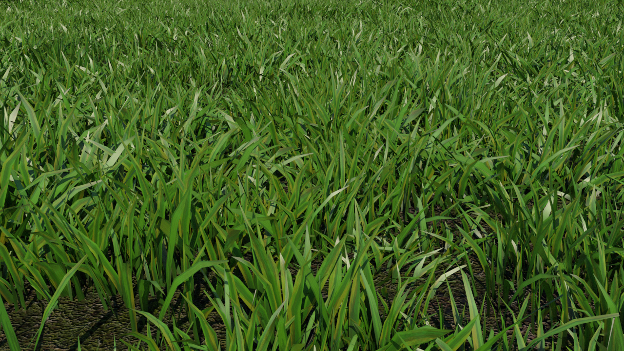 3d Modeling Rendering And Animation Grass Patch 3d Model Realtime 3d Models World