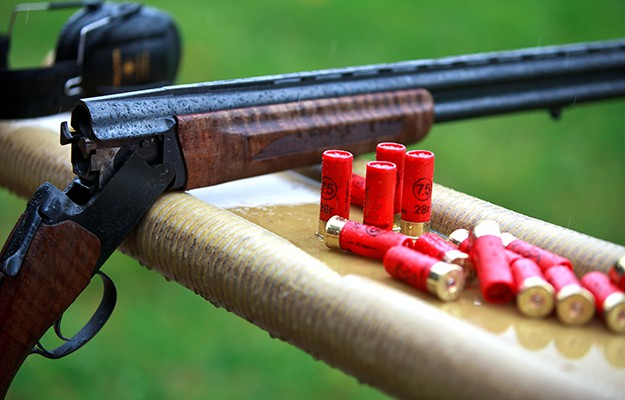 How to Choose Guns and Ammo Survival Life - firearm bill of sales