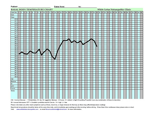 Basal Body Temperature Chart BBT A guide for women on how to read it