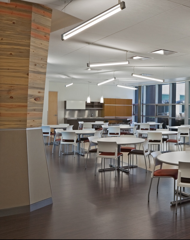 T5 Indirect Lighting Fixture Nrel Cafeteria | Bartco Lighting