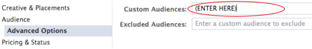 custom data lookalike audiences