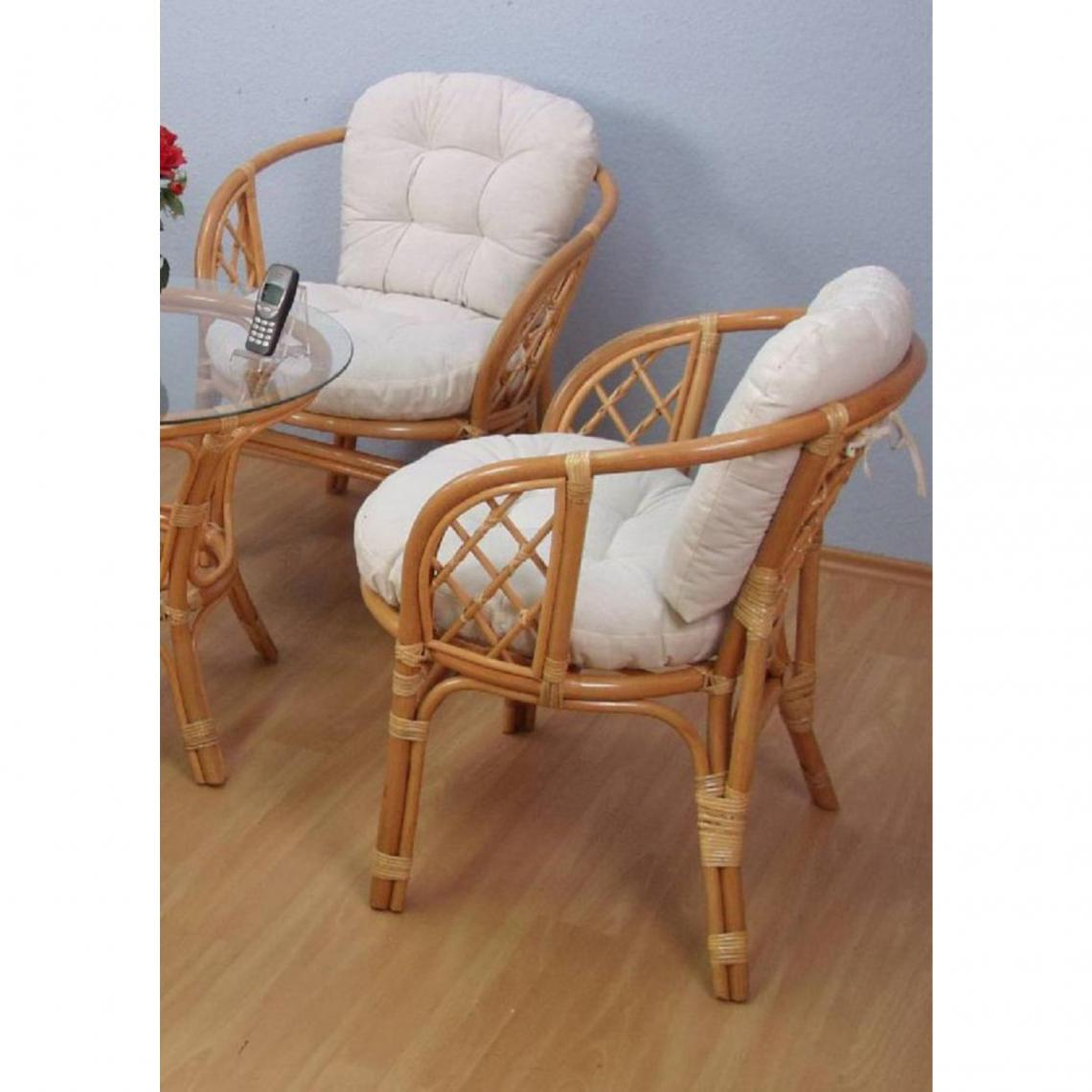Lot De 2 Fauteuils Ensemble De 2 Fauteuils En Rotin Lot De 2 Marron Réf Ho1142155 3645935