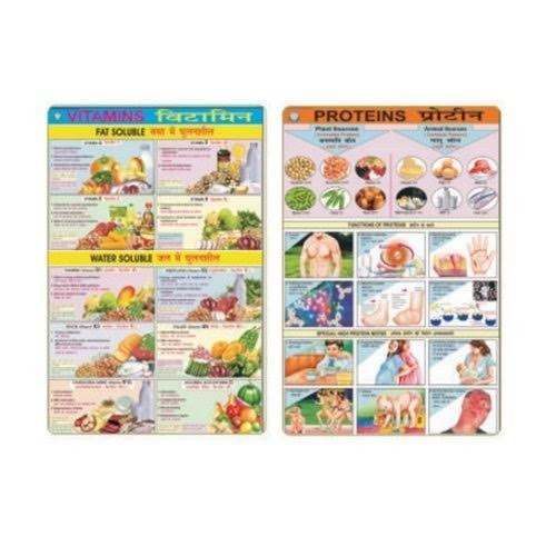 Chart On Food And Nutrition, Educational Charts Ballygunge