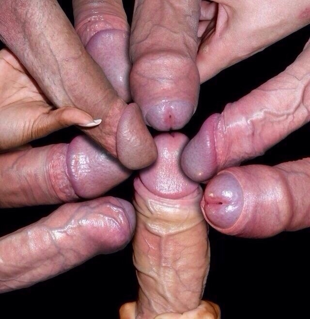 cocks cumming on each other