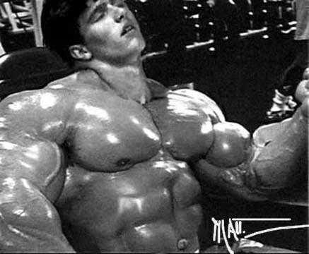 muscle cowboys morphed