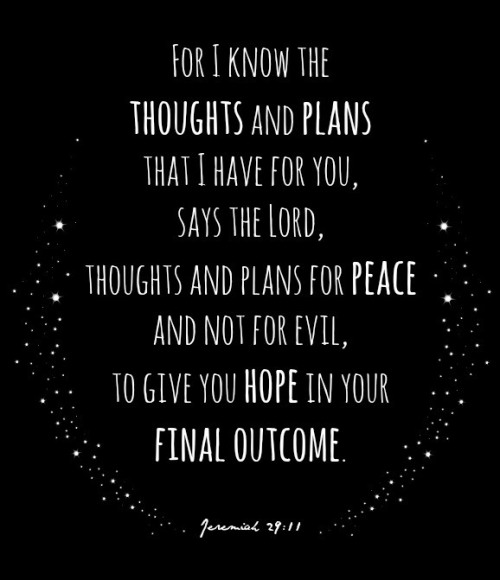 Iphone 5 Wallpaper Bible Quotes Jeremiah 29 11 On Tumblr