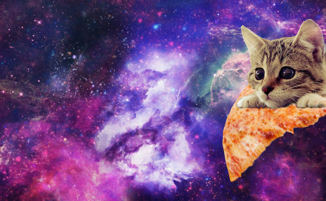Gravity Falls Iphone 5 Wallpaper Space Cat Background Pictures To Pin On Pinterest Pinsdaddy