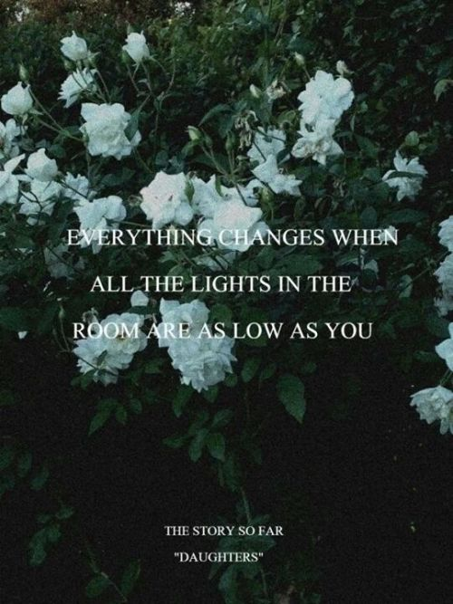 Fall Out Boy Lyric Wallpaper Floral Background Tumblr