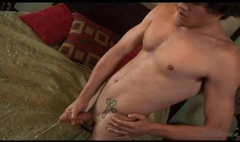 gay furry porn tumblr