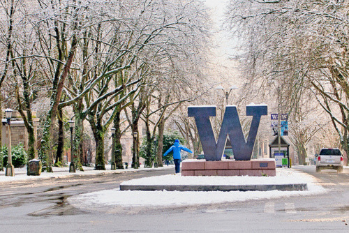 Do you think I would be able to get into the University of Washington Seattle?