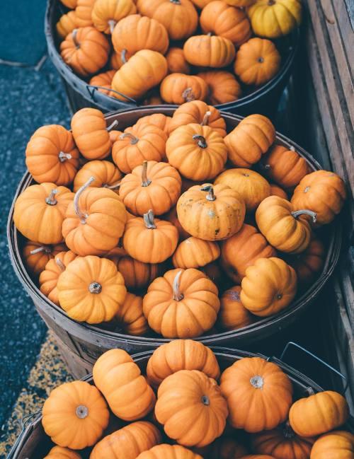 Free Fall Harvest Desktop Wallpaper Food Hippie Boho Orange Halloween Fall Autumn Seasonal