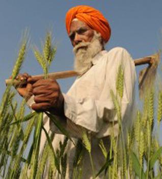 Eh Mera Punjab : Punjab budgets for farm suicides Punjab's...