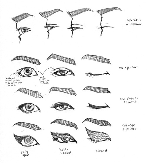 applying eye makeup diagram here is the diagram of the eye